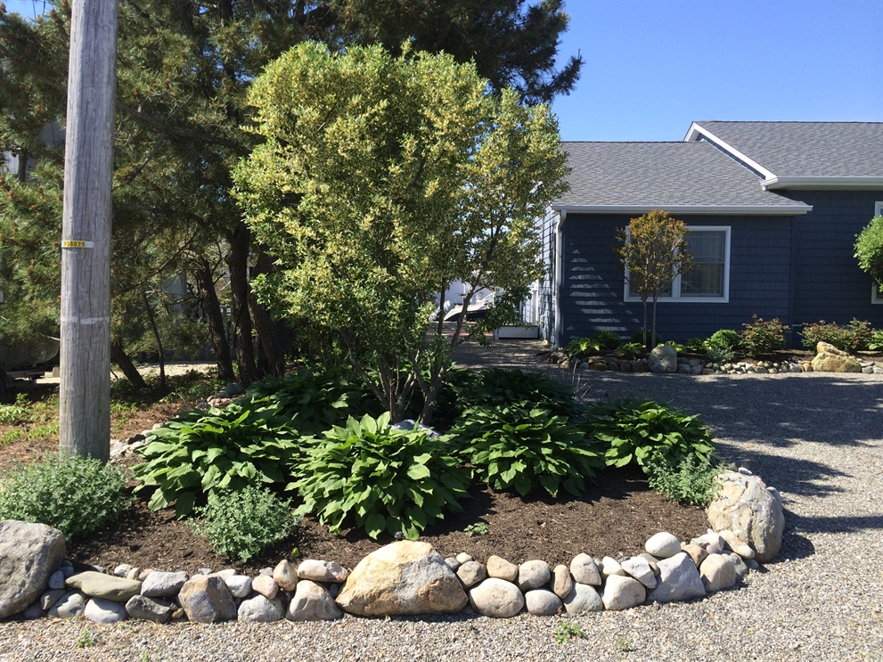 landscapers in south jersey - Landscapers In South Jersey - David Ash Jr Landscape Contractor