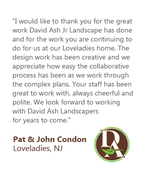 Best Landscapers in Long Beach Island